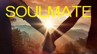 ソウルメイト――魂で結びついた永遠の身内のお話